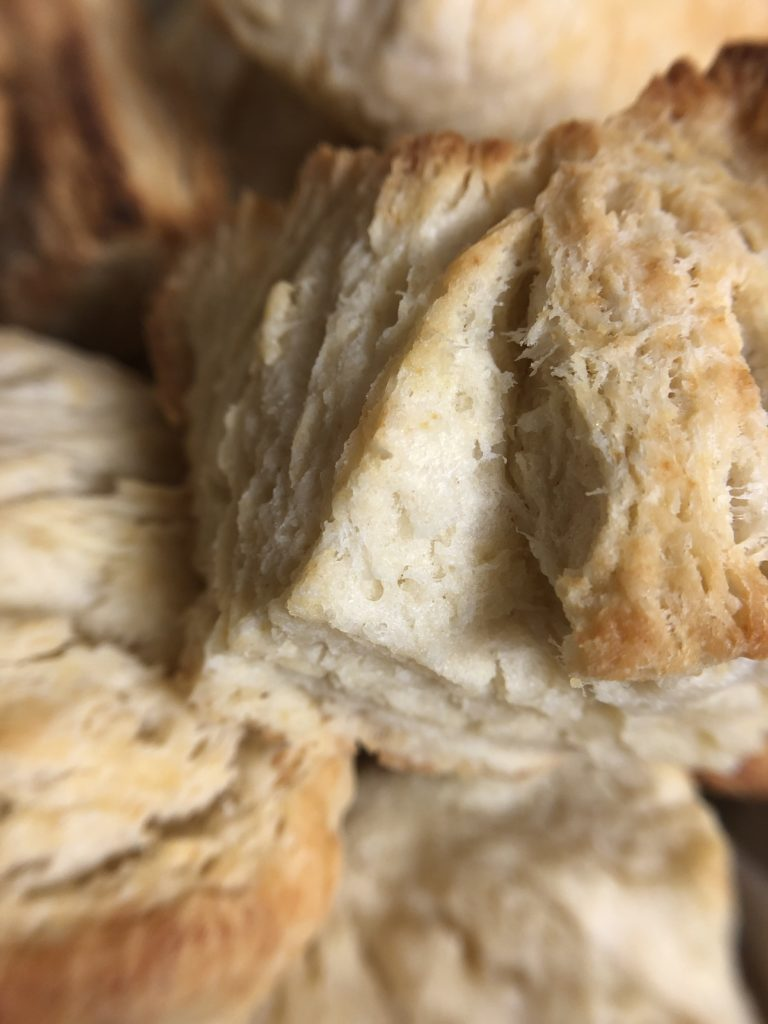 The BEST Biscuits - Tuttle Kitchen