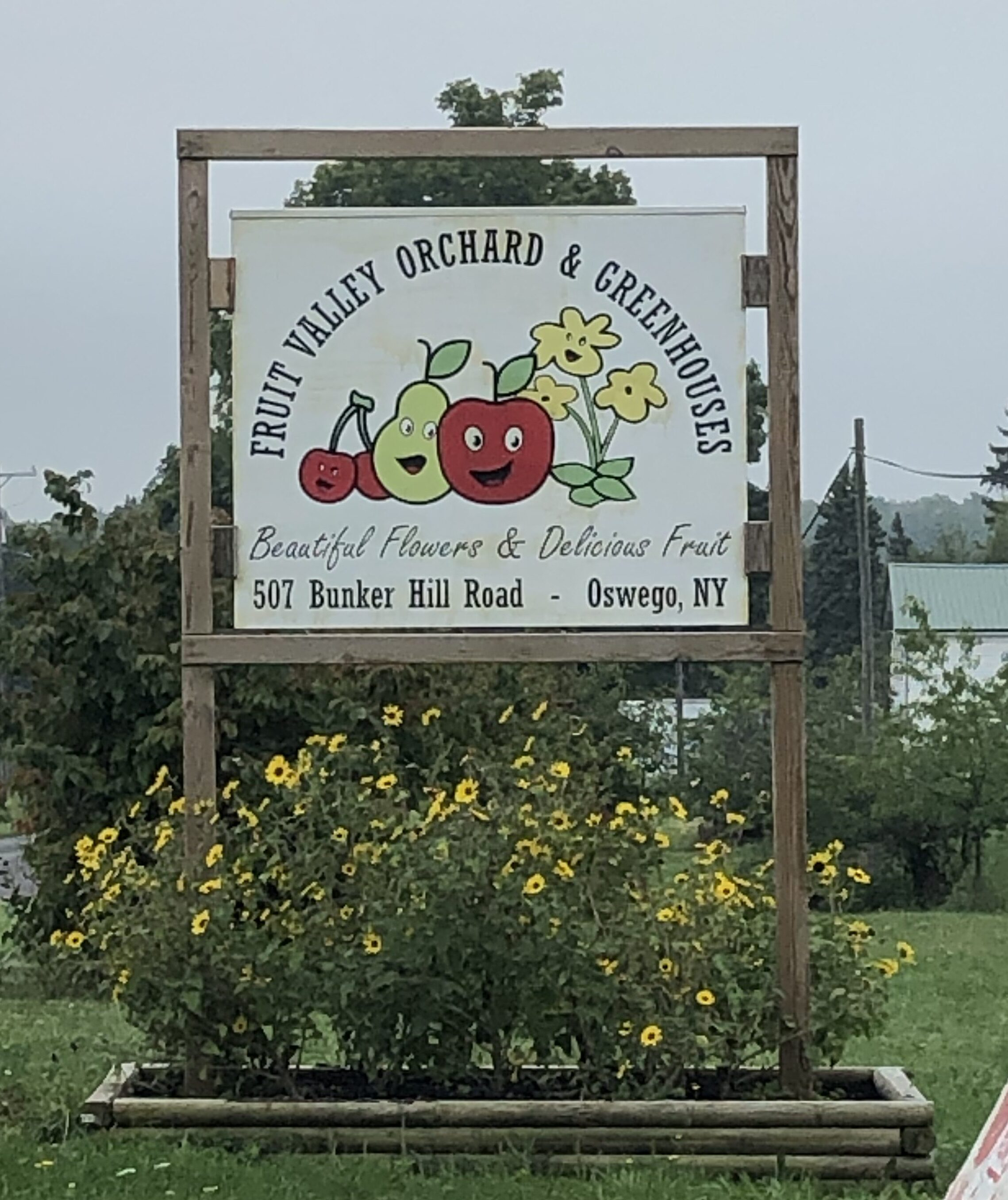 Apple Picking - Tuttle Kitchen