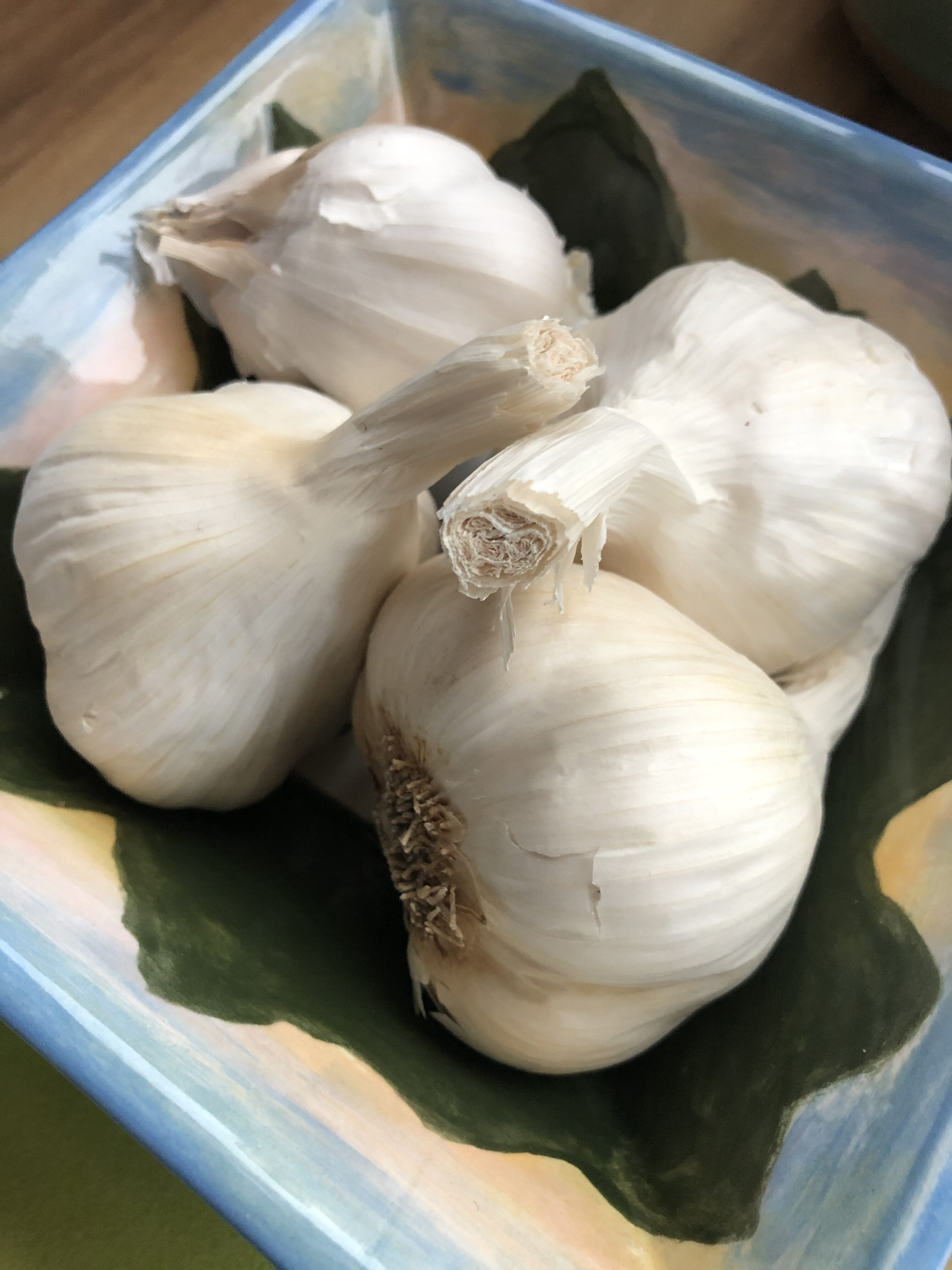 Garlic Heads - Tuttle Kitchen